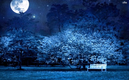 bench-in-the-moonlit-park-20768-2560x1600