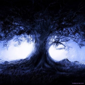 old-dark-shadow-tree-ipad-wallpaper-1024-x-1024x1024